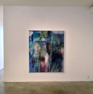 Beneath the Skin, installation view