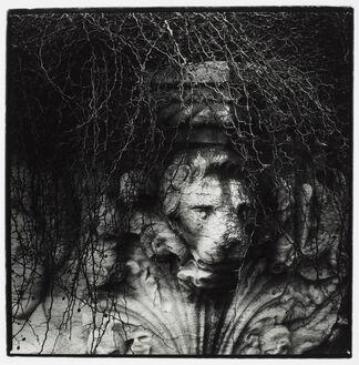 Morten Krogvold - Time exposure, installation view