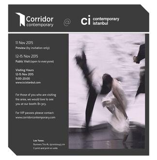 Corridor Contemporary at Contemporary Istanbul 2015, installation view