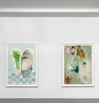 'Preview', installation view