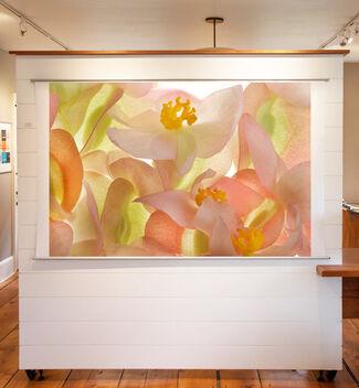 Seeing Flowers, installation view