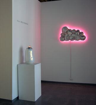 focus    ERICA ROSENFELD, installation view