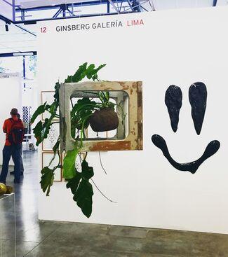 Ginsberg Galería at PArC 2017, installation view