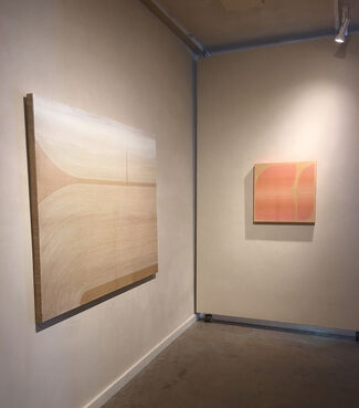 Kelly Ording-New Paintings, installation view