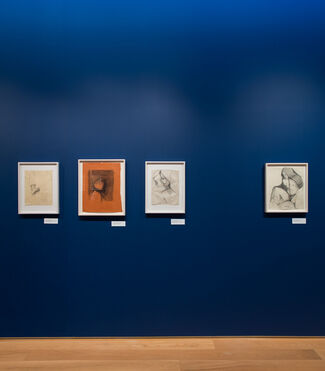 Tomi Ungerer: All in One, installation view