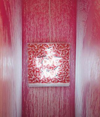 Brainwashed, installation view