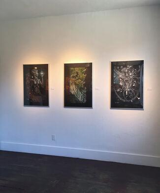 Diverse Medium, installation view