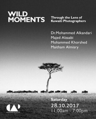 Wild Moments: Through the Lens of Kuwaiti Photographers, installation view
