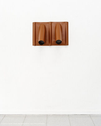 Riding a Saddle Roof - Andreas Slominski, installation view