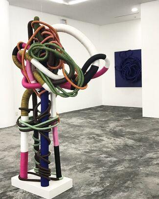 Jesus Pedraglio - Nudos de Realidad, installation view