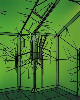 SuperThrive, installation view