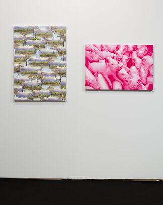 Anat Ebgi at Art Los Angeles Contemporary 2018, installation view