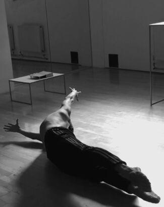 The Nijinsky project – Faun, installation view