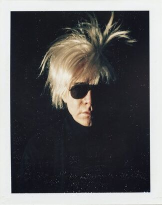 Andy Warhol Polaroid Pictures, installation view