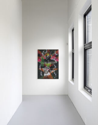 James Aldridge – Blossom and Decay, installation view