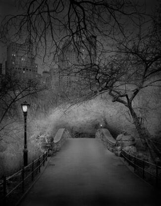 Michael Masaaia-Deep in a Dream, Central Park, installation view