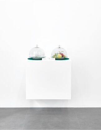 Davide Balula: Iron Levels, installation view