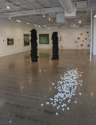 2017 MFA Candidacy Exhibition, installation view