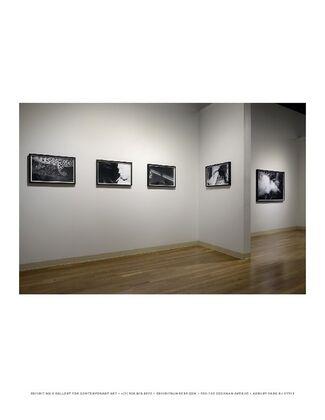 Bayou, installation view