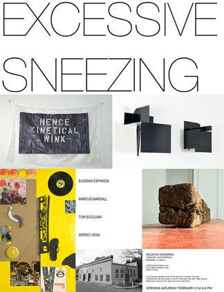 Excessive Sneezing, installation view