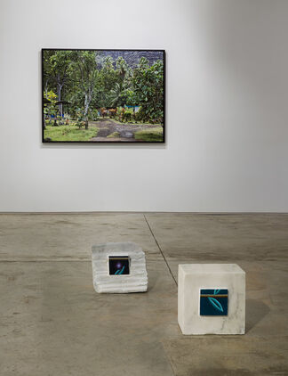 A Verdant Summer, installation view