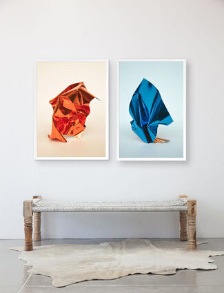 NEW Freeforms Photography Series by Maria Piessis, installation view