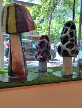 Interuppting Nature, installation view