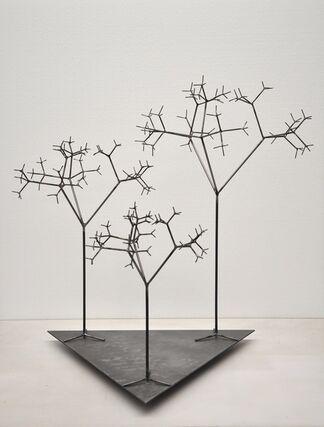 Novi Mundi by Andrea Marini, installation view