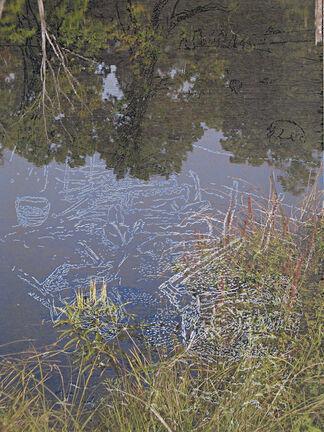 Environmental Perspectives by Rimer Cardillo, installation view
