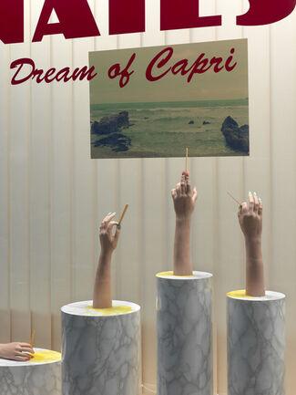 FORT: Dream of Capri, installation view