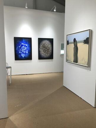 Art Southampton 2015, installation view