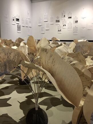 Bernice Akamine, installation view