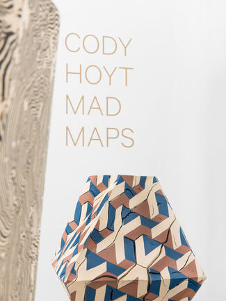 """""""Mad Maps"""" by Cody Hoyt, installation view"""