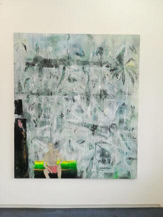 """At the Margins of Shadows"" by Neringa Križiūtė, installation view"