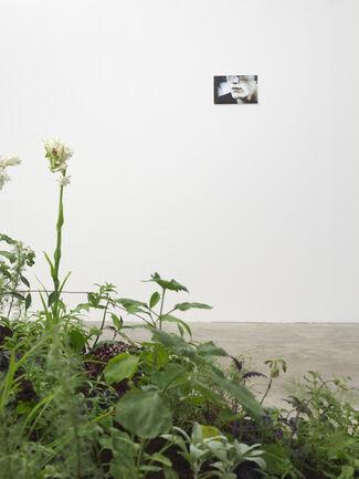 Anna Virnich 'Body Electric', installation view