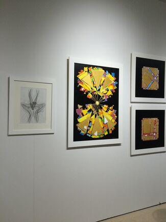 Barbarian Art Gallery at SCOPE Miami Beach 2014, installation view