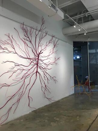 DALYA LUTTWAK: Man = Upside - Down Tree, installation view