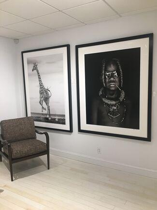 Winter 2018 Show, installation view