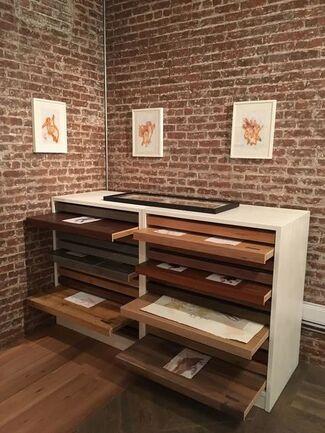 FRANCAMENTE, installation view
