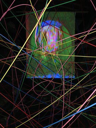 VIDEORGANISM: Infinite Mutation - Solo Exhibition by Masayuki Kawai, installation view