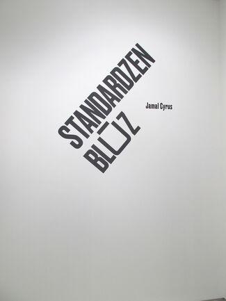 Jamal Cyrus: STANDARDZENBLŪZ, installation view