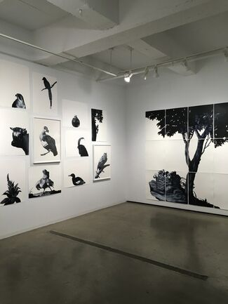 Shelley Reed, up close, installation view