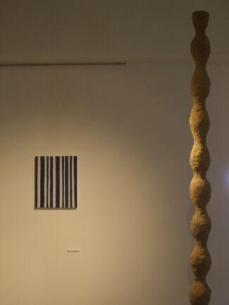 """vol.1 Sumiko Fukuda """"Seeds and Pillars"""", installation view"""