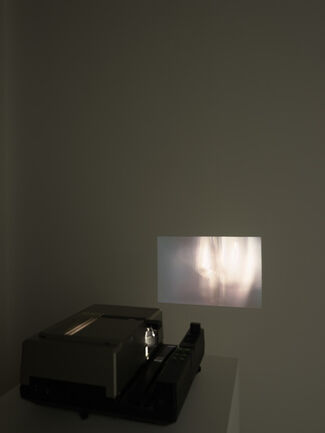 Edith Dekyndt - Chronology of Tears, installation view
