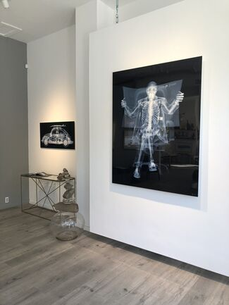 SURFACE + EXPRESSION, installation view
