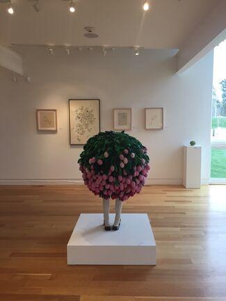 Botanica, installation view