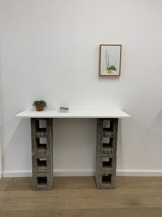 THE GARDEN, installation view