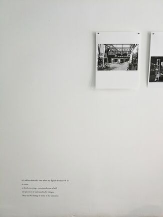 Flotsam, Jetsam, Lagan & Derelict, installation view
