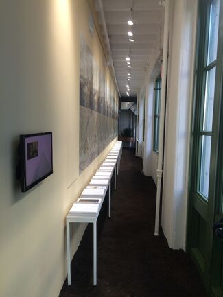 Social Ecologies, curated by Greg Lindquist, installation view
