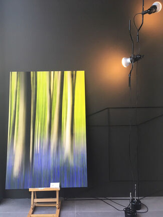 Yves Ullens:  Nature's Way, installation view